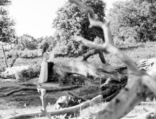 Engagementshooting in der Wahner Heide | Delia & Christian